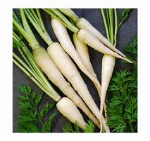 Carottes blanches