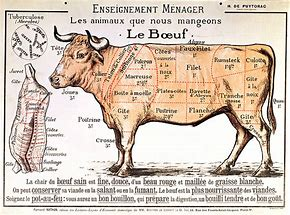 Boeuf enseigment ménager